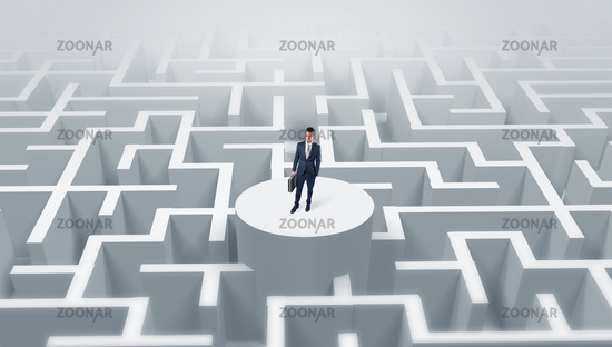 Businessman standing on the top of a maze