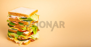 Whole tasty sandwich concept