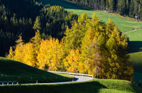 Light and shadows. Autumn Santa Magdalena Italy mountain village environs, grassy hills and secondary serpentine road. Picturesque traveling, seasonal and countryside beauty concept view.