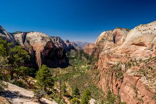 Landscape in Zion National Park