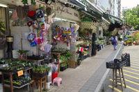 Hong Kong Flower Market in Mong Kok.