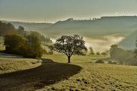 Morning mood on the Swabian Alb, Germany