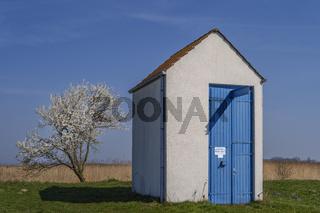 Schoepfwerk und bluehender Baum