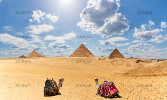 Egypt Pyramids panorama with two camels under the clouds