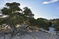 Western Coast Sardinia 3