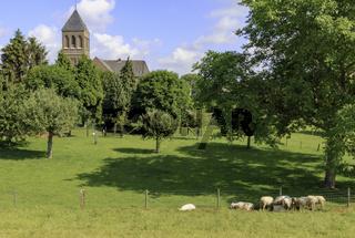 Landschaftsbild mit Pfarrkirche St. Johannes Baptist, in Dornick, Emmerich, Niederrhein,