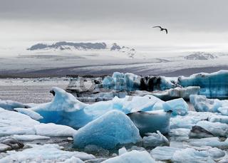 Island - Eisformationen vor einem großen Gletscher