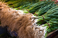 Fresh scallions or green onions at the farmers market
