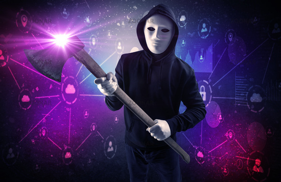 Burglar in secured database and network concept