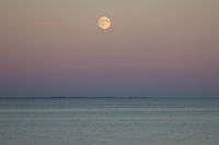 full moon, Moonlight at the sea after sunset in Denmark, Baltic Sea
