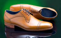 Male Shoes On Green Background