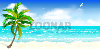 Tropical sandy beach 1