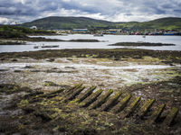 Low tide in castletownbere harbor in ireland