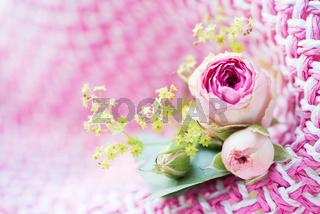 Zarte Rosenblüten