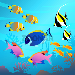 Beautiful underwater world, seascape, fish and sea bottom