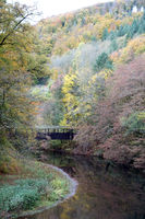 Autumn forest at the Wied after the watermill at the Laubach, Neuwied, Rhineland-Palatinate, Germany