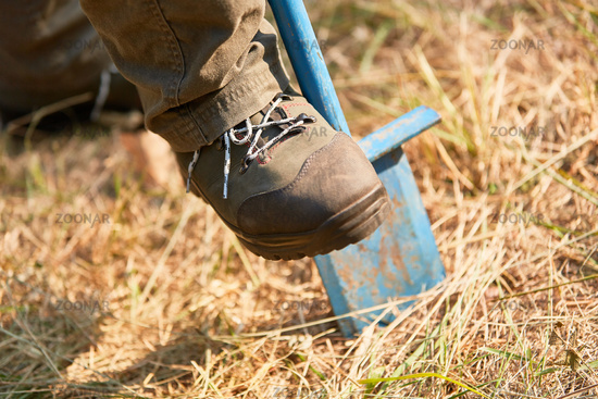 Waldarbeiter buddelt mit dem Spaten ein Pflanzloch