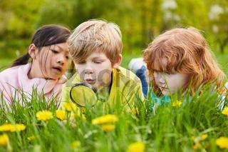 Junge und zwei Mädchen entdecken die Natur