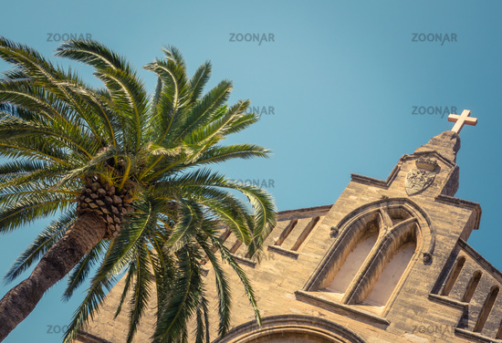 Spanish Church And Palm Tree