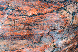 sea stone background, the texture of the stone