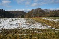 Winter field, Wildenhof, Koenigstein/Opf. , Oberpfalz, Bavaria