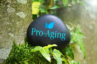 "The Word ""Pro-Aging"" on a black stone with ivy"