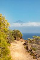 La Gomera,Canary Islands, Spain