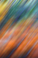 the abstract colors     background texture