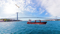 The Bosporus straight with a ship, the Beylerbeyi Palace and the Bosphorus Bridge, Istanbul