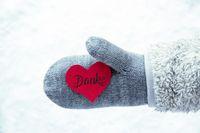 Glove, Fleece, Snow, Red Heart, Danke Means Thank You