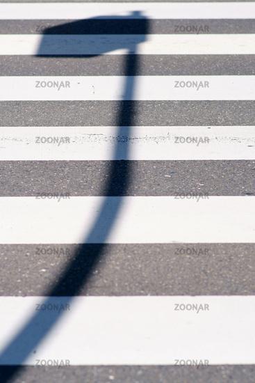 Lantern shadow on the pedestrian lane