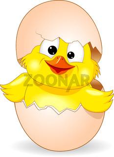 Cute chick was born