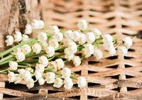 weiße Maiglöckchen auf Holz Hintergrund