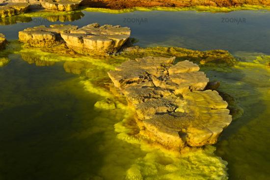 Mushroom-like sulphure rock formations, geothermal field of Dallol, Danakil depression, Ethiopia