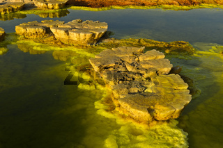 Pilzförmiges Schwefelgestein ,Dallol, Danakilsenke, Afar Dreieck, Äthiopien