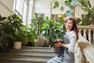 Floristin mit Grünpflanze beim Dekorieren auf Treppe