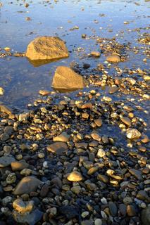 Kieselsteine im Rhein