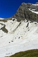 Alpinists crossing a snowfield in the Plan Salentse cirque, Grand Muveran massif, Switzerland