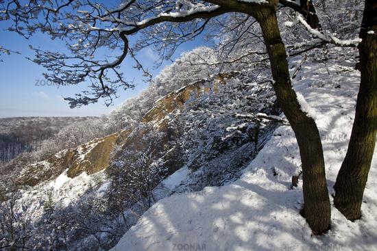 Wartenberg in winter, Witten, Ruhr Area, North Rhine-Westphalia, Germany, Europe