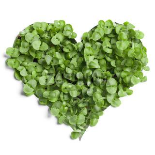 Heart shaped grass