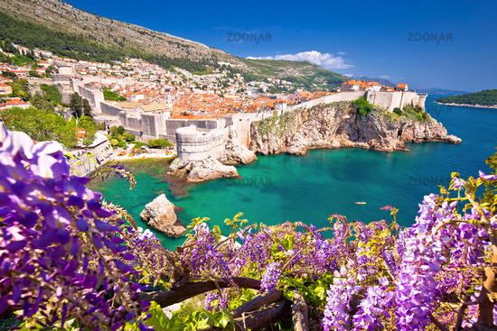 Medieval town of Dubrovnik with famous walls colorful view