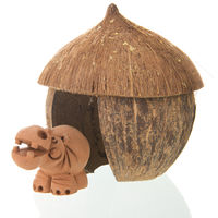 Tropical straw hut with hippo