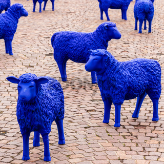 European Union colored blue Sheeps. Exhibition Event for EU election. On a Marketplace in Sindelfingen, Baden-Wuerttemberg, Germany, Europe.