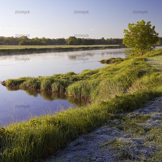 river Weser in the morning, Petershagen, East Westphalia, North Rhine-Westphalia, Germany Europe
