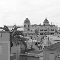 Palm tree and Casa Carbonell. Scene in Alicante, Spain.