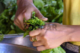 Woman hands cutting and preparing fresh vegetables