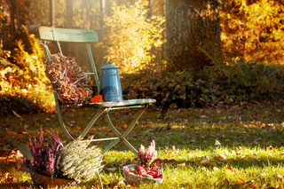 Gartensuhl mit herbstlicher Dekoration