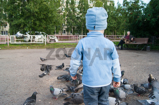 Three-year-old white boy in a blue hat, jeans and sandals on a cool summer day enthusiastically feeds gray pigeons.