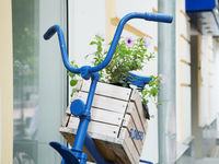 wooden box with flowers on an old blue bike city street