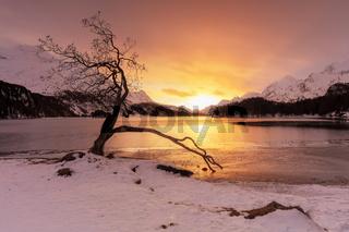 Sils (GR): Ausflug an den zauberhaften Silsersee